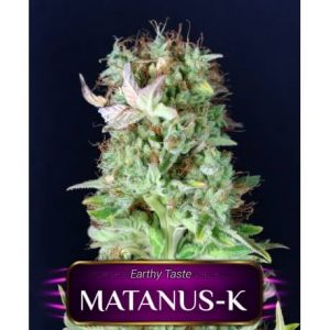MATANUS-K GeaSeeds