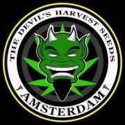 Devils_Harvest_1