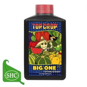 Big One 1 L Top Crop