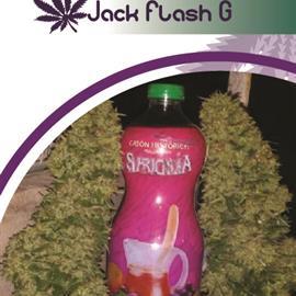 JAKC FLASH G