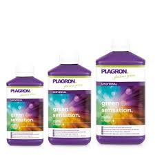 Green Sensation 1 L Plagron