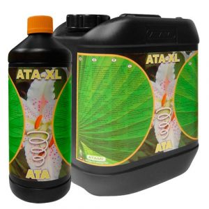 ATA - XL 1 L ATA