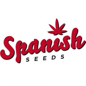 Auto Jack 50 Fem. Spanish Seeds