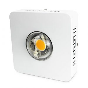 LED Agrolite 72W Led CREE CXB3590 3500K BIN CD